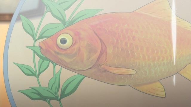ほたる_金魚